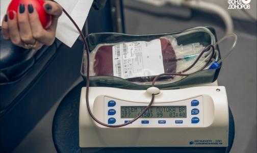 Фото №1 - ВЦИОМ: Число россиян, опасающихся заразиться опасными инфекциями при сдаче крови, уменьшается