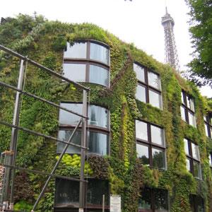 Фото №1 - Что посмотреть в Париже