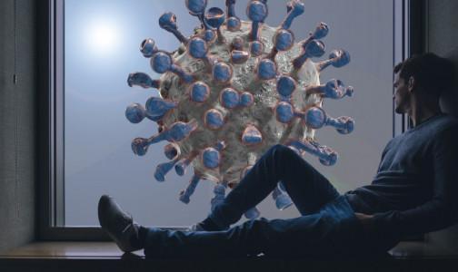 Фото №1 - Сколько нужно антител, чтобы защититься от коронавируса, выяснили ученые