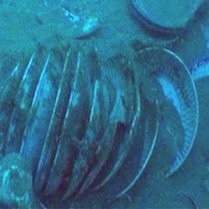 Фото №1 - Китайцы поднимут клад со дна морского