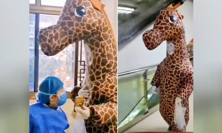 Фото №1 - Женщина явилась в больницу в костюме жирафа, чтобы защититься от коронавируса (видео)