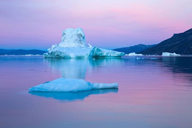 Фото №1 - Таяние арктических льдов стало причиной распространения смертельного вируса