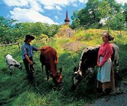 Фото №3 - Швеция в «табакерке»