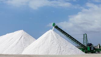 Фото №2 - Морская соль: факты и мифы