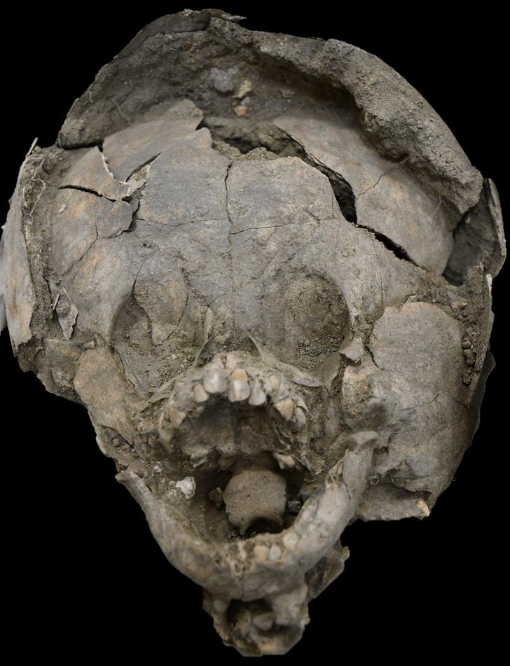 Фото №1 - Обнаружены свидетельства жуткого ритуала древних эквадорцев