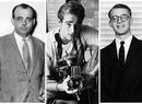 Пропавшие без вести: знаменитости, которые внезапно исчезли на пике славы