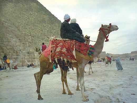 Фото №1 - Время боится пирамид