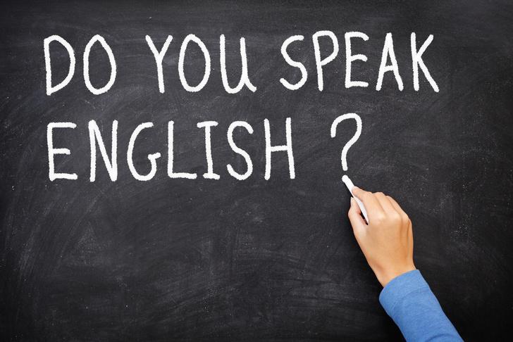 Фото №1 - Ученые выяснили, когда лучше начинать учить иностранные языки