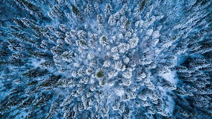 Фото №1 - Год в Сибири: выжить любой ценой
