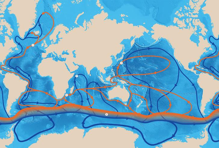 <b>Условные обозначения</b>:<br /> Основные океанические течения. Красным цветом показаны теплые, синим&nbsp;— холодные.<br /> (1) Сомалийское летнее (2) Куросио (3) Гольфстрим (4) Агульясское (5) Антарктическое циркумполярное