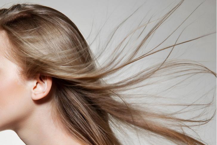 Фото №7 - Вся правда о блондинках... и о мужчинах, которые от них без ума