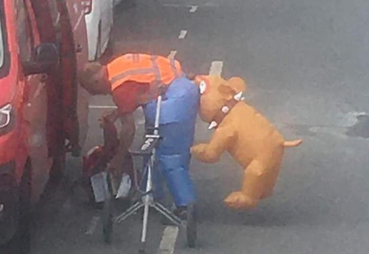 Фото №1 - Британский почтальон пришел на работу в костюме в виде собаки, кусающей его зад, но Королевская почта оказалась не в восторге (фото)