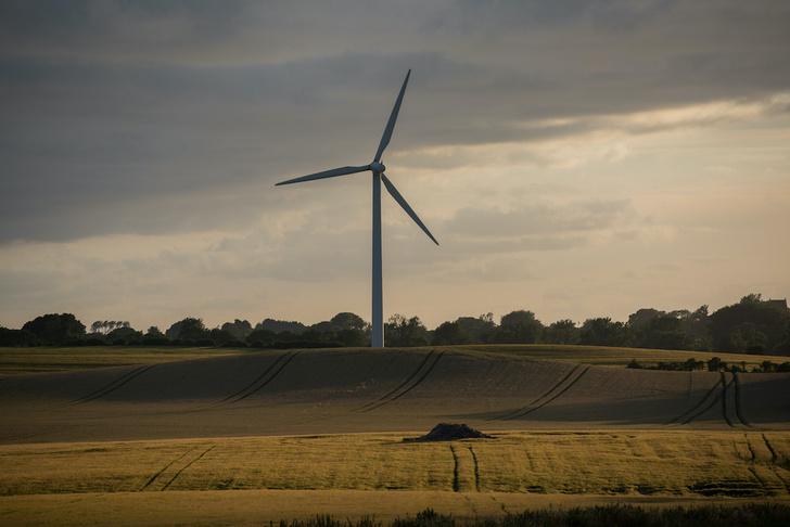 Фото №1 - Солнце, ветер и биотопливо: 5 примеров альтернативной энергетики