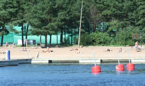 Фото №1 - В Петербурге гибнет один из тысячи купальщиков