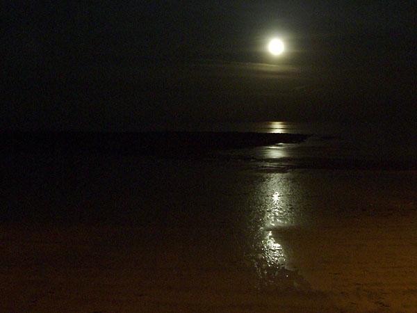 Фото №1 - Сто литров лунной надежды