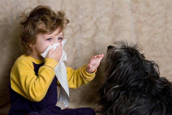 аллергия на плесень как определить