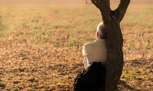 Фото №1 - В Японии на фоне коронавирусных ограничений появится министр по одиночеству
