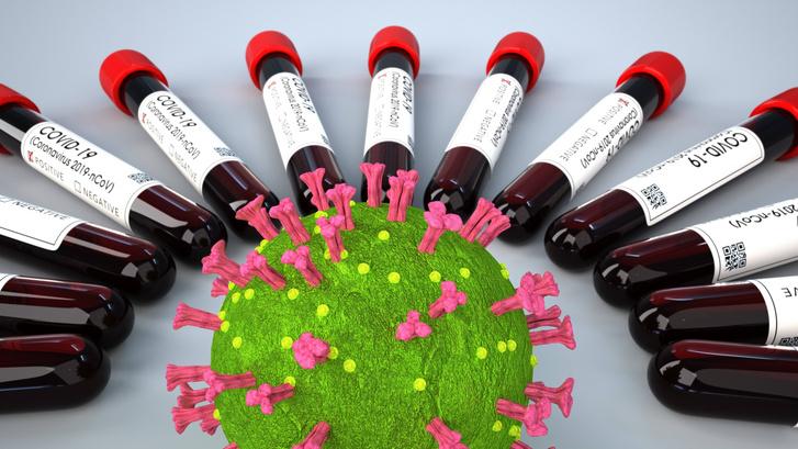 Фото №1 - Чем опасно двойное заражение гриппом и COVID-19