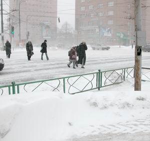 Фото №1 - Москву заметет снегом