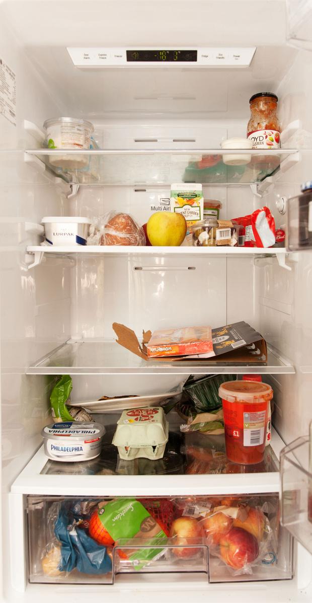 Фото №38 - Что лежит в холодильнике у жителей разных стран: 54 любознательных фото