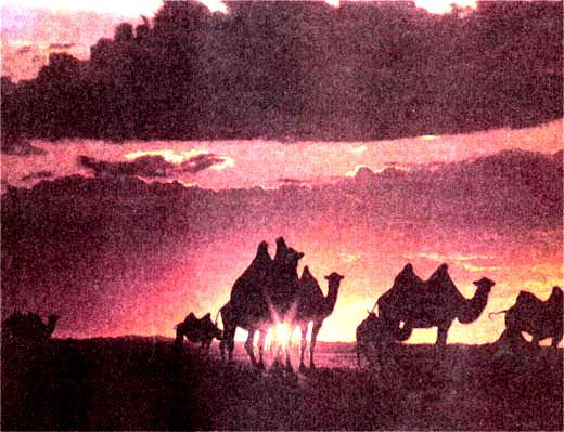 Фото №3 - Восход над морем гранитов