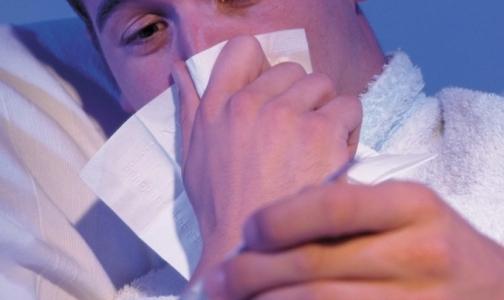 Фото №1 - Как не заболеть ОРВИ зимой