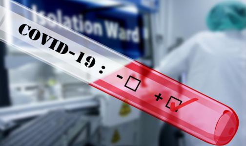 Фото №1 - Россияне смогут сдать платный тест на коронавирус на дому