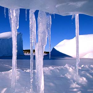 Фото №1 - Антарктика не может переработать углекислоту