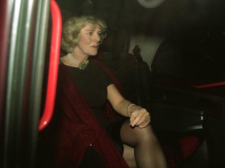 Фото №3 - Почему друзья принца Чарльза невзлюбили герцогиню Камиллу