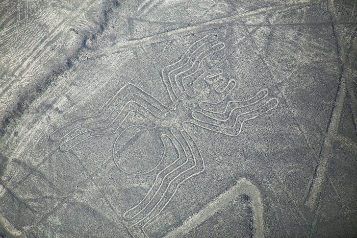 Фото №1 - Археологи разгадали тайну геоглифов на плато Наска