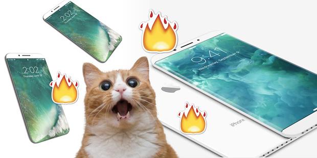 Фото №1 - Каким будет новый iPhone?