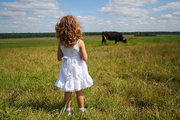 Фото №5 - В мире животных