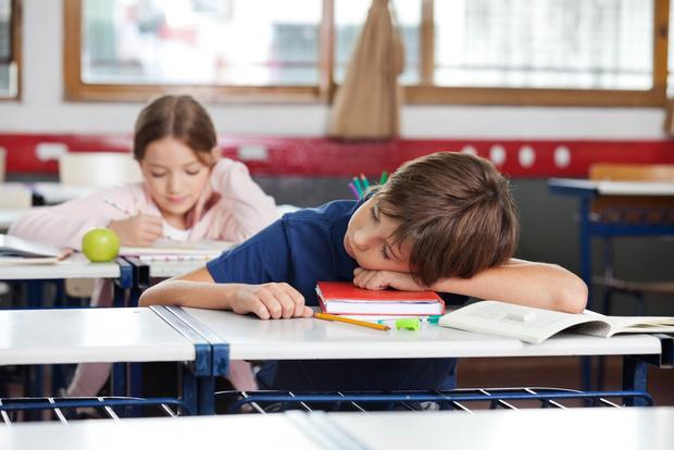 Фото №1 - Сон помогает закрепить знания