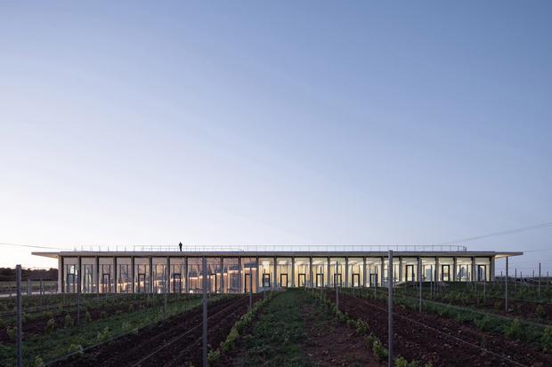 Фото №8 - Винодельня со смотровой площадкой на крыше в Чехии