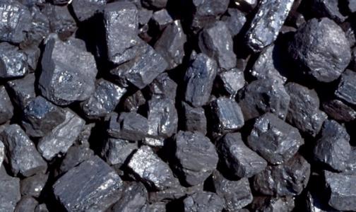 Фото №1 - За похудение медсестре подарили 5 тонн угля