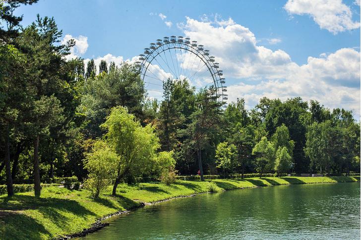 Фото №1 - Какой московский парк самый крупный?