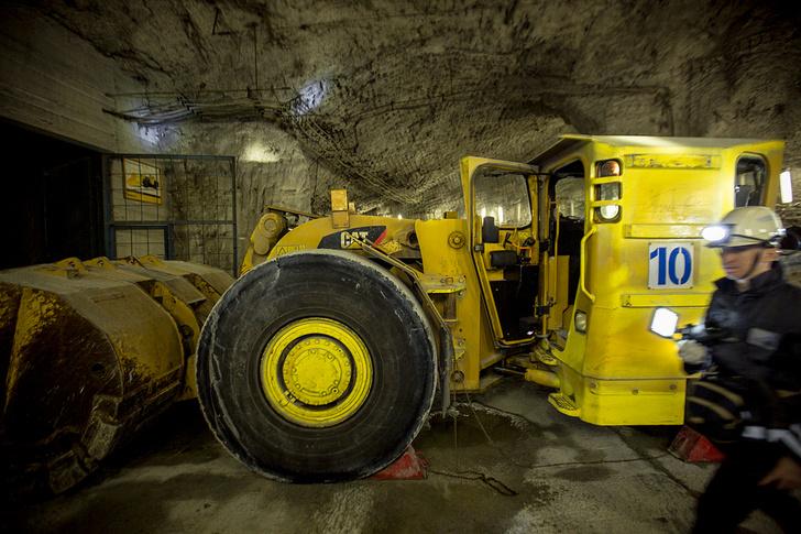 Фото №17 - Мамонт, город подземных машин, сливочная уха: 25 причин лететь на Таймыр