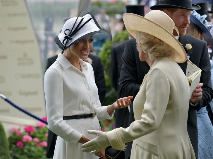 Фото №2 - Герцогиня Коварство: как Камилла повлияла на уход Сассекских из БКС