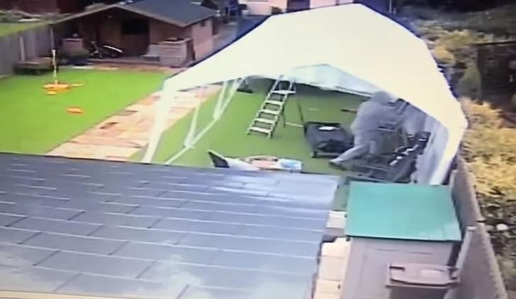 Фото №1 - Ветер уносит парня вместе с тентом (видео)