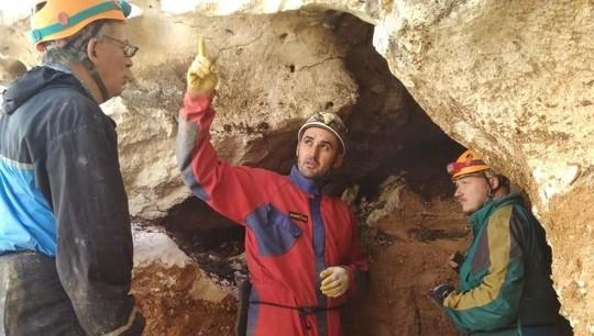 Фото №1 - В Китае обнаружили предка современных куниц