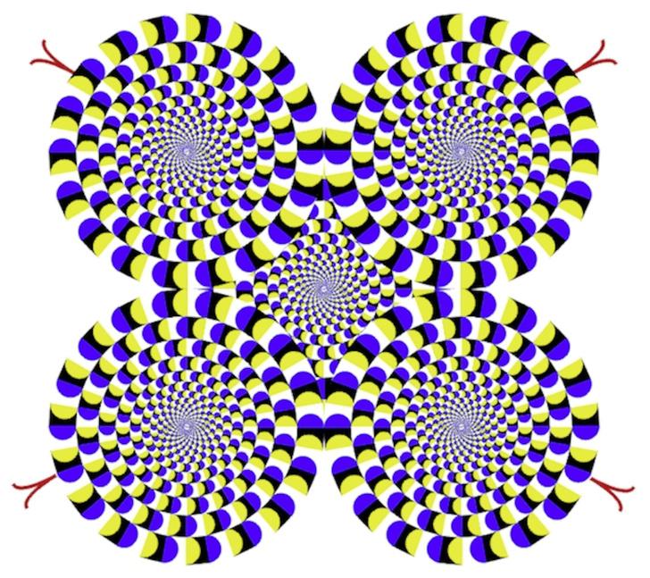 Фото №3 - Тактика обмана: тайны мозга, которые приоткрываются в оптических иллюзиях