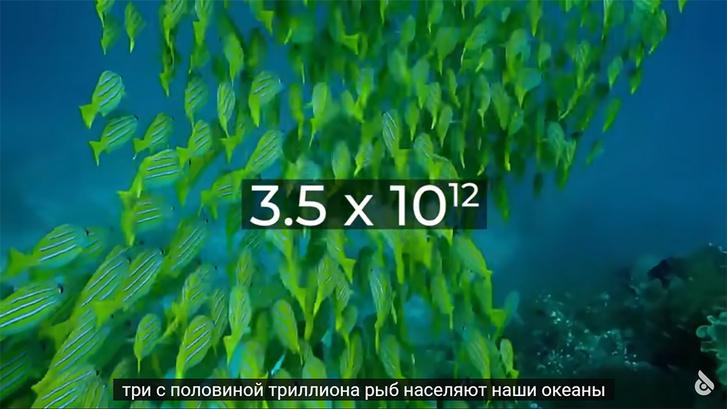 Фото №1 - Самые большие числа Вселенной— вплоть до числа Грэма
