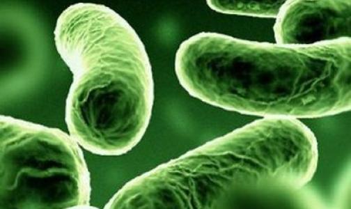 Фото №1 - Доказана польза пробиотиков для младенцев