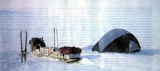 Фото №2 - Гренландский дневник
