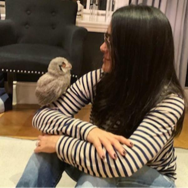 Фото №2 - Причуды звезд: Сальма Хайек завела дома живую сову