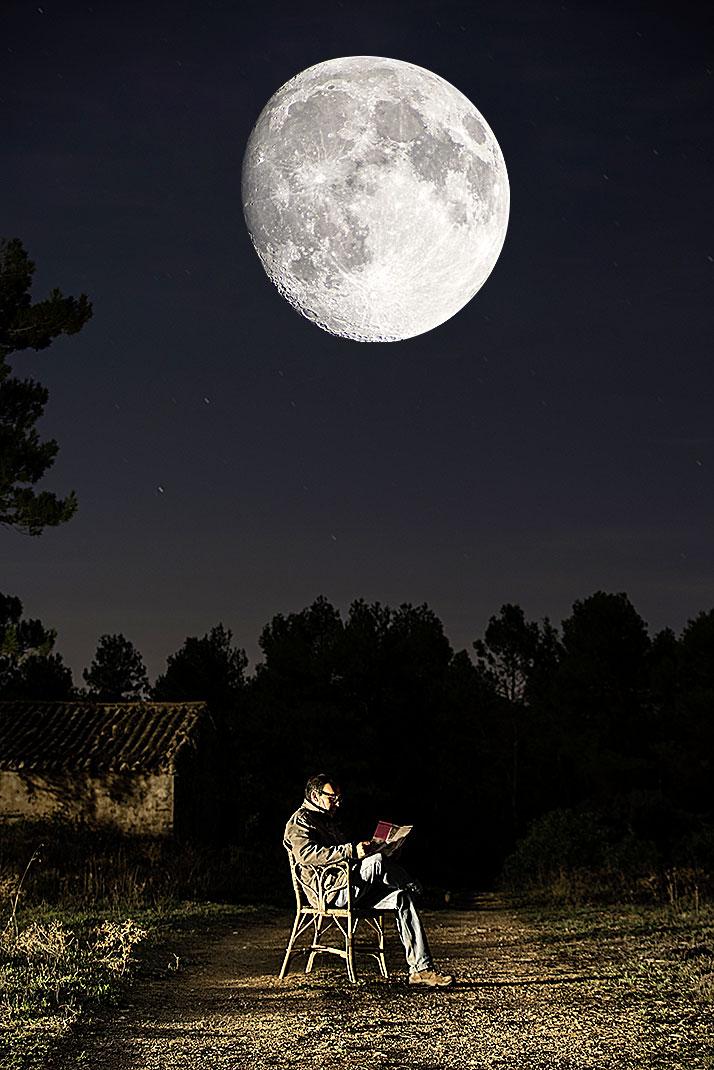 Фото №8 - Зоология: в свете полной луны