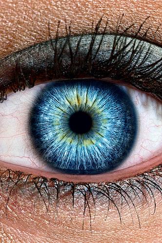 Фото №1 - Сколько мегапикселей в глазу?