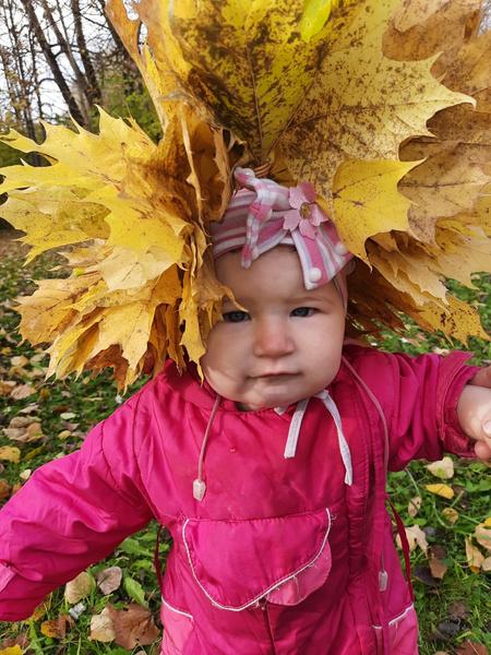 Фото №14 - Детский фотоконкурс «Собираем гербарий»: выбирай лучшее фото