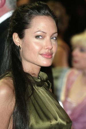 Анджелина Джоли, 2003 год