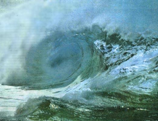 Фото №1 - Океан совсем рядом